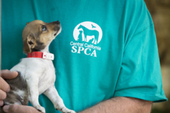 Central California SPCA - What We Do