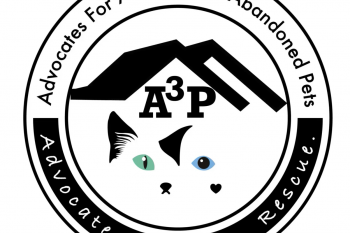 Advocates for Abused and Abandoned Pets - A3P Video